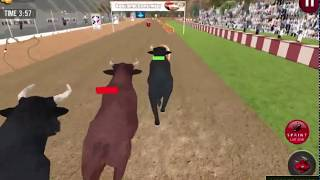 Angry Bull Racing - Bull Racing Game Walkthrough