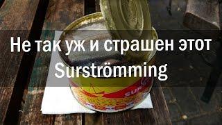 Суровые беларусы дегустируют Surströmming