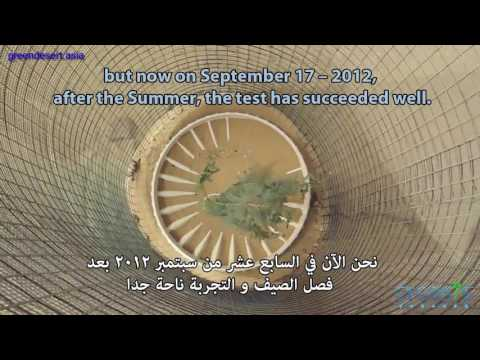Greendesert asia 7 Results of reforestation experiment in Dubai Desert with waterbox Technology