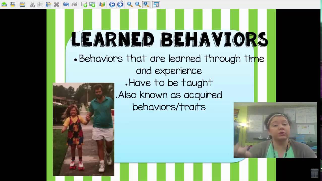 medium resolution of Inherited Traits Learned Behaviors - YouTube