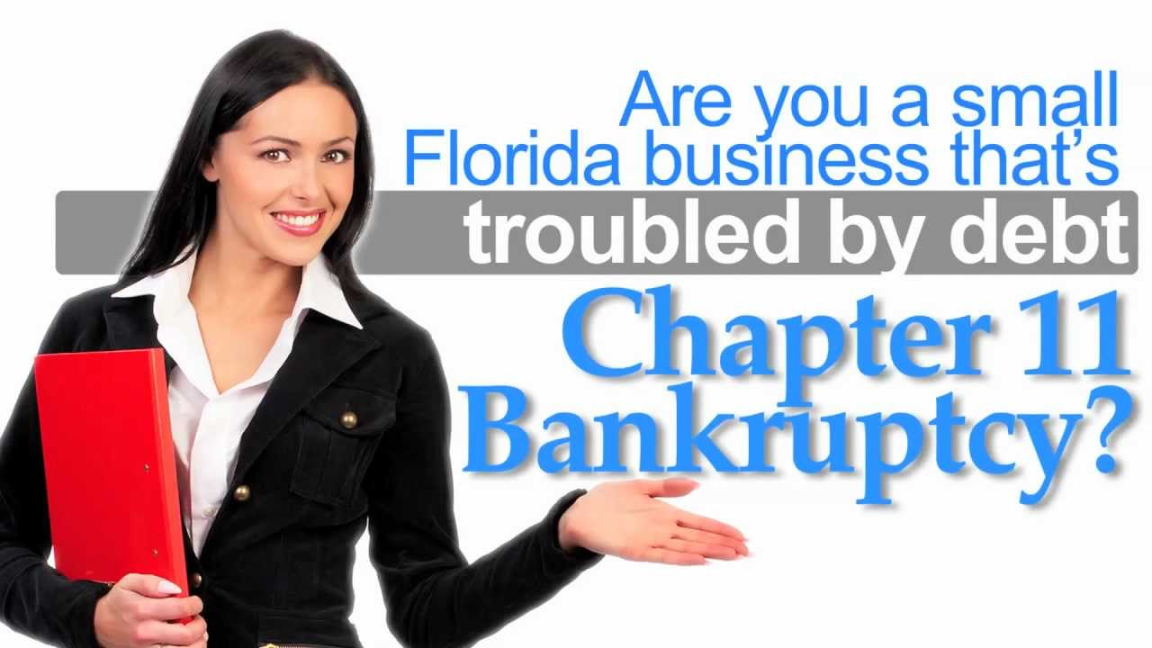 chapter 11 bankruptcy The discount retailer ames has filed for bankruptcy protection under chapter 11 of the us bankruptcy code what happens when a.