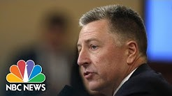 Volker: I 'Would Have Objected' To Having Ukraine Investigate The Bidens | NBC News