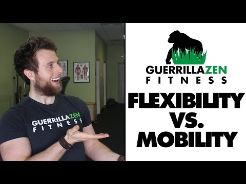 Flexibility vs Mobility | The Differences!