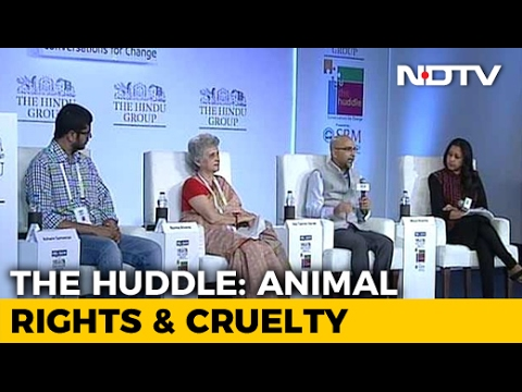The Huddle: Do Animals Have Rights?