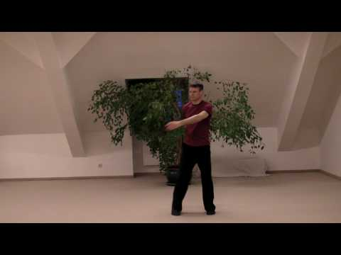 Opening the Energy Gates of Your Body Qi Gong by Paul Cavel