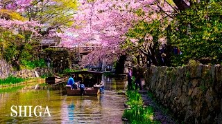 SHIGA . JAPAN Tourist Attractions