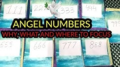 PICK A CARD 🔮 WHY ARE YOU SEEING THIS ANGEL NUMBERS, WHAT & WHERE TO FOCUS 🌝🌚 TIMELESS
