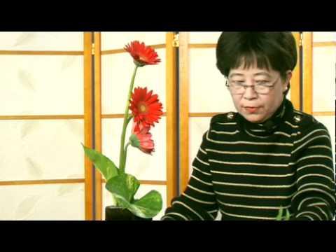 Cam Hoa - Uoc Mong