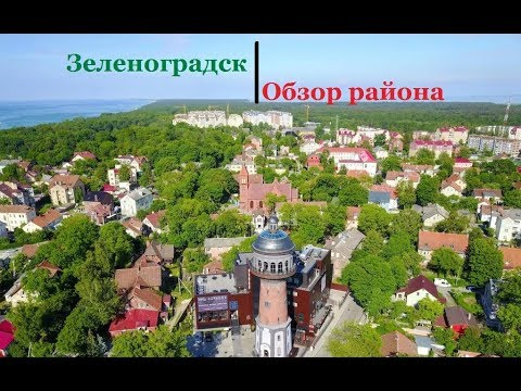 Зеленоградск   Обзор района