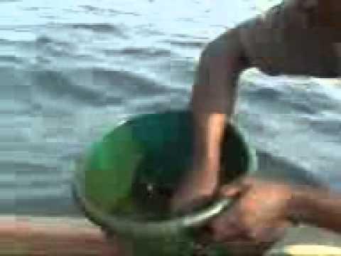 IDOHO PLATFORM OIL SPILLAGE,EKET,NIGERIA