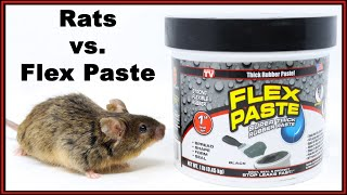 Flex Paste vs. Rodents. Does Flex Paste Actually Block Rodent Holes? Mousetrap Monday