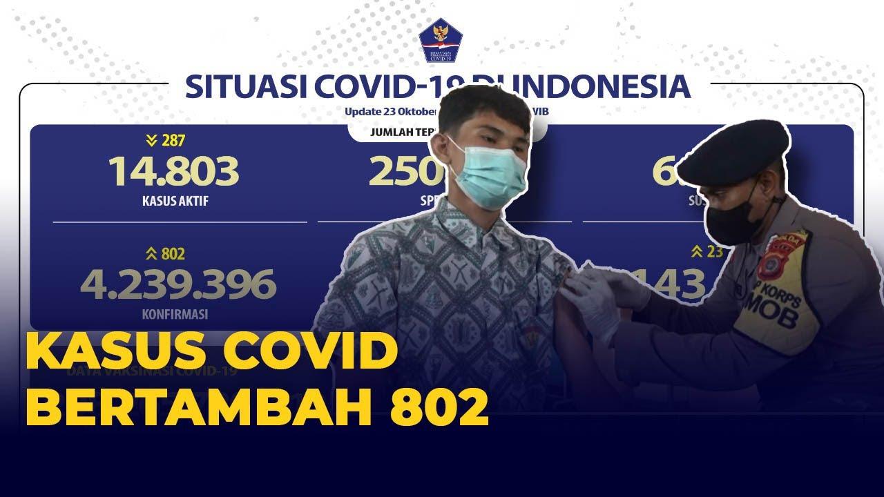 Download Update Corona Indonesia 23 Oktober Tambah 802 Kasus, 1.066 Sembuh, dan 23 Meninggal