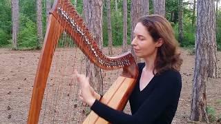 """Carolan's Farewell to Music"" // Nadia Birkenstock, Celtic Harp (keltische Harfe, harpe celtique)"