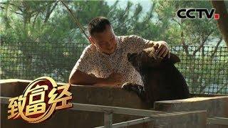 《致富经》 20190628 巧用桃园卖猪肉 一斤卖出88元| CCTV农业