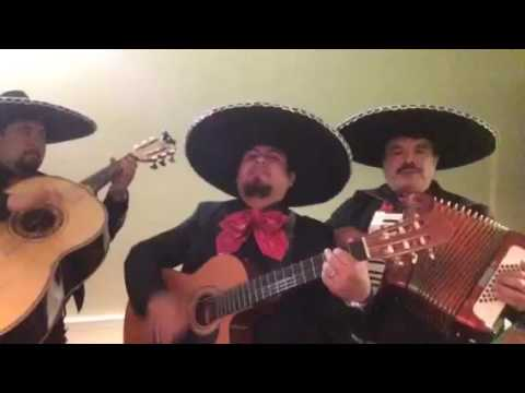 MARIACHI BAND HIRE POP| LATIN BANDS FOR WEDDINGS