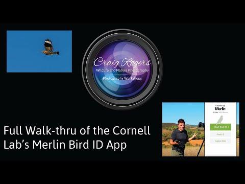 Full Walk-thru Of The Merlin Bird ID App By Cornell Lab