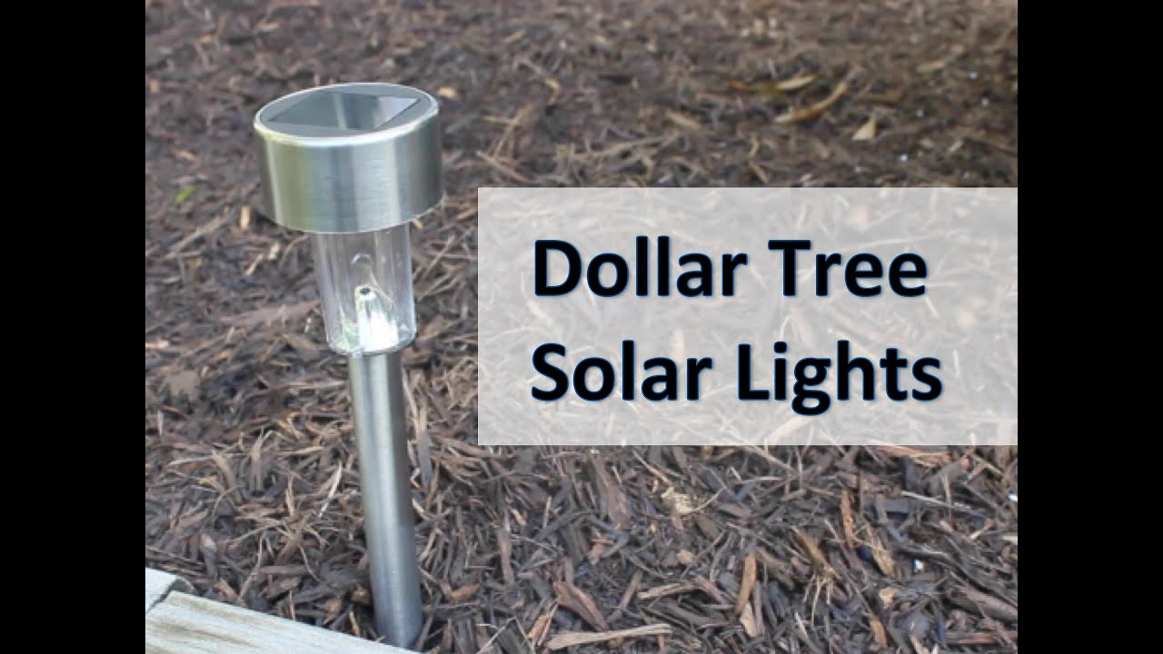 Dollar Tree Solar Light Review Do They Work Youtube Sunny Gardensolar Yard Lights Powered Lighting