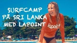 Jag lär mig surfa i Sri Lanka!