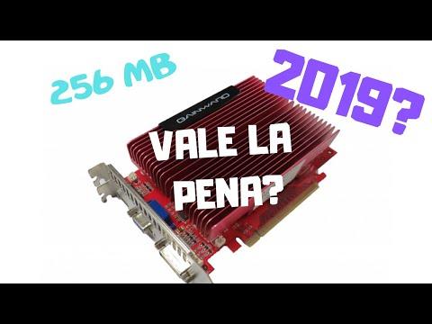 Una Tarjeta Grafica de 256 MB en 2019?
