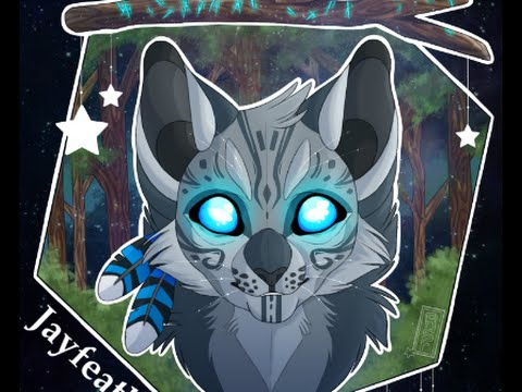 Warrior Cats Jayfeather Dreams and Visi...