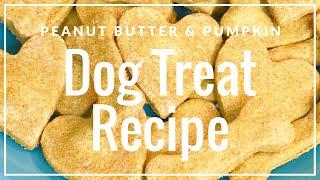 Peanut Butter & Pumpkin | DOG TREAT RECIPE🐾🐕