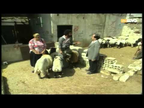 مسلسل أحلام أبو الهنا حلقة 17 كاملة HD 720p / مشاهدة اون لاين