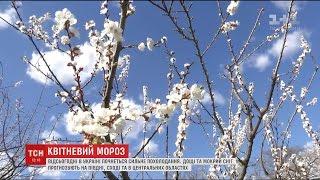 Різку зміну погоди синоптики обіцяють по всій Україні
