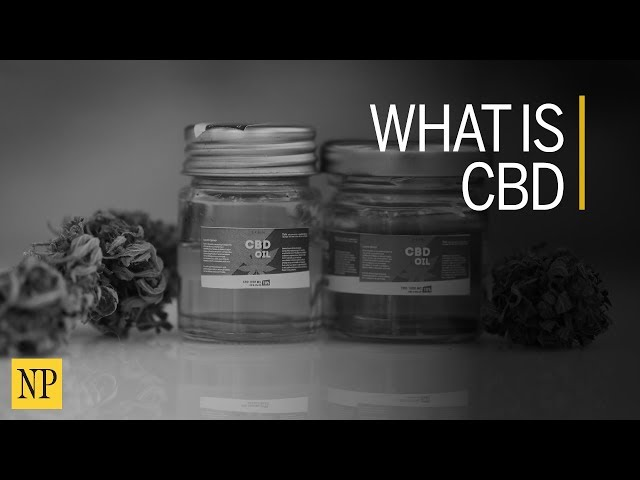 What scientists are saying about the CBD boom | The Province
