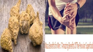Maca Benefits for Men 7 Amazing Benefits Of The Peruvian Superfood