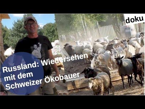 Russland: Wiedersehen mit Schweizer Ökobauer