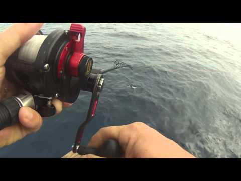 Go Pro Oceanside 95 9/26/15 Mexico Fishing for Yellowfin Tuna and Dorado
