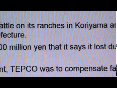 FUKUSHIMA: COW PRODUCERS LOSE $, CAN
