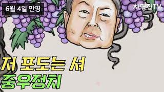 포도는 셔/중우정치 - 6월 4일 만평 [차명진TV]