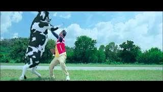 hombre vs vaca