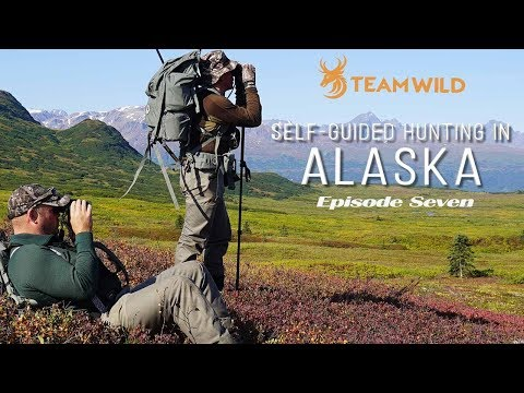 Self-guided Moose & Caribou Hunting In Alaska: Episode 7 – Hunting Giant Bull Moose