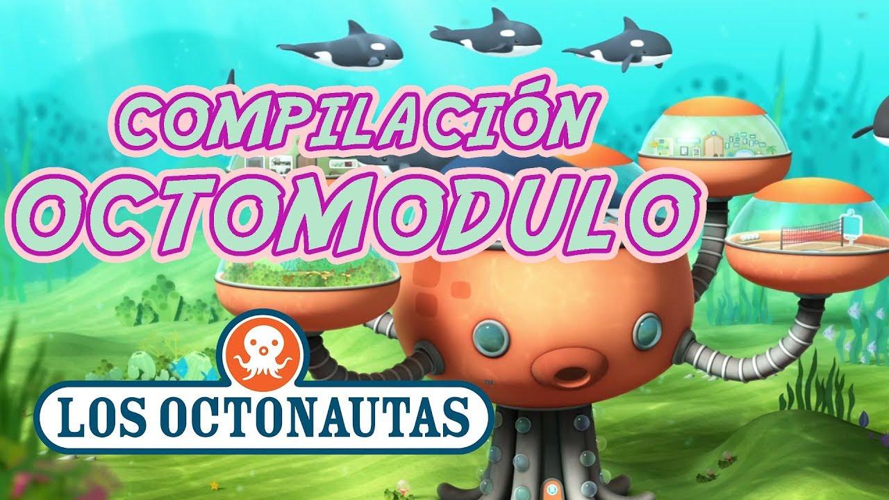 Los Octonautas Oficial En Español - Compilación   El Octomodulo