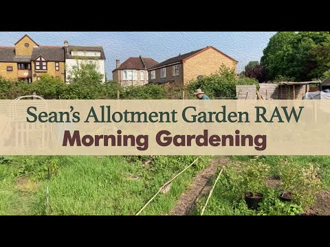 may-year-3:-raw-footage---morning-gardening