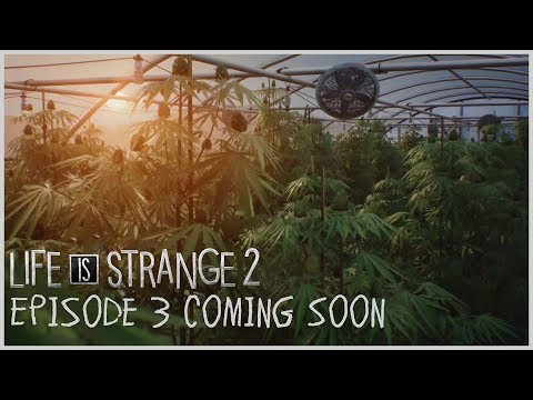 Life is Strange 2 returns with this 4/20-appropriate trailer
