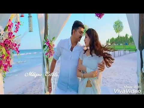 love and romance status tamil   whatsapp status video tamil   trendy tamilan
