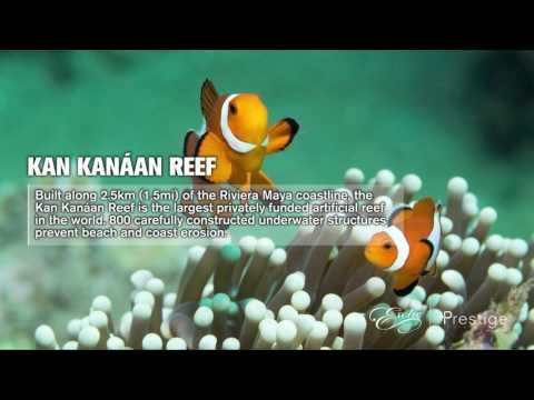 6 Ways Karisma Hotels & Resorts Take Care of the Environment