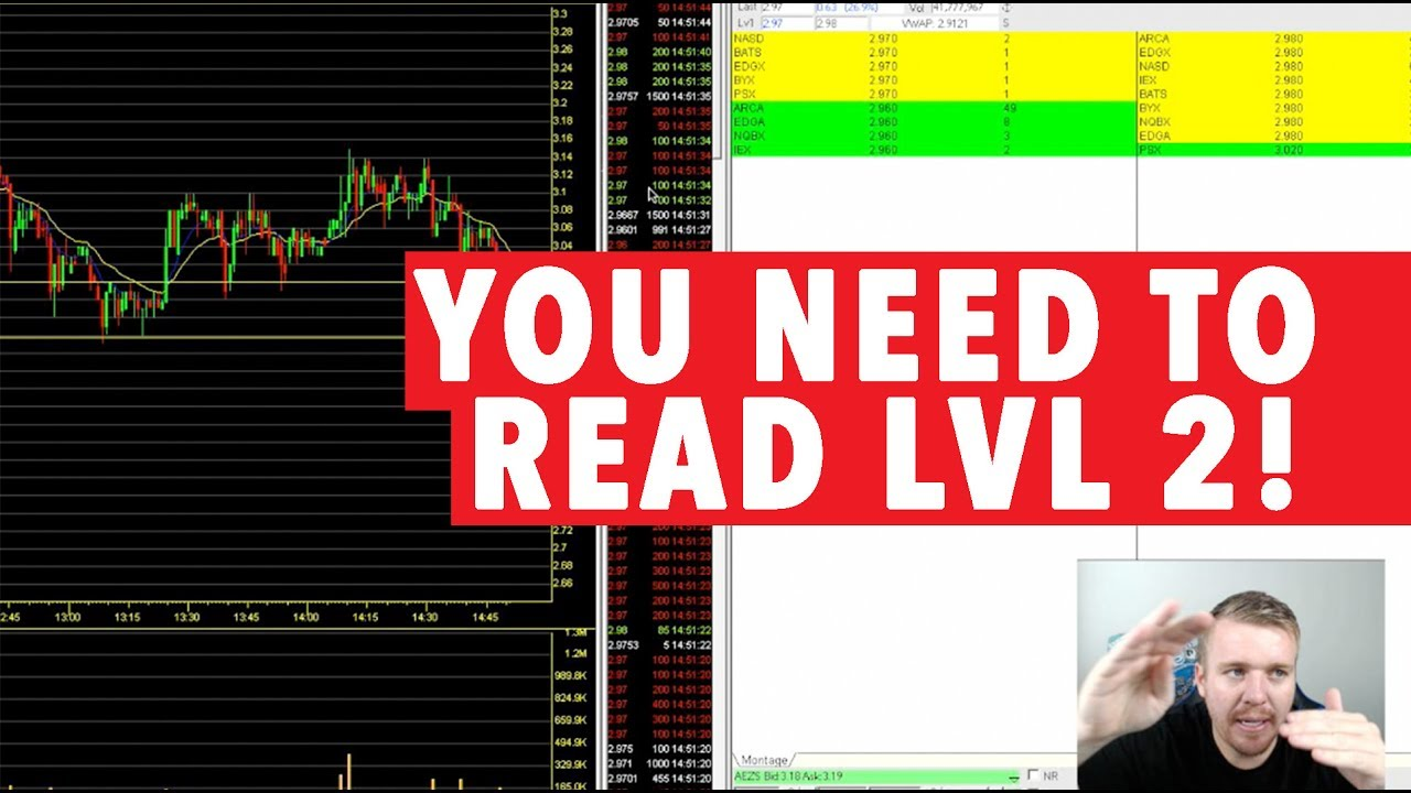 Day Trading Level 2 YOU NEED TO READ IT!