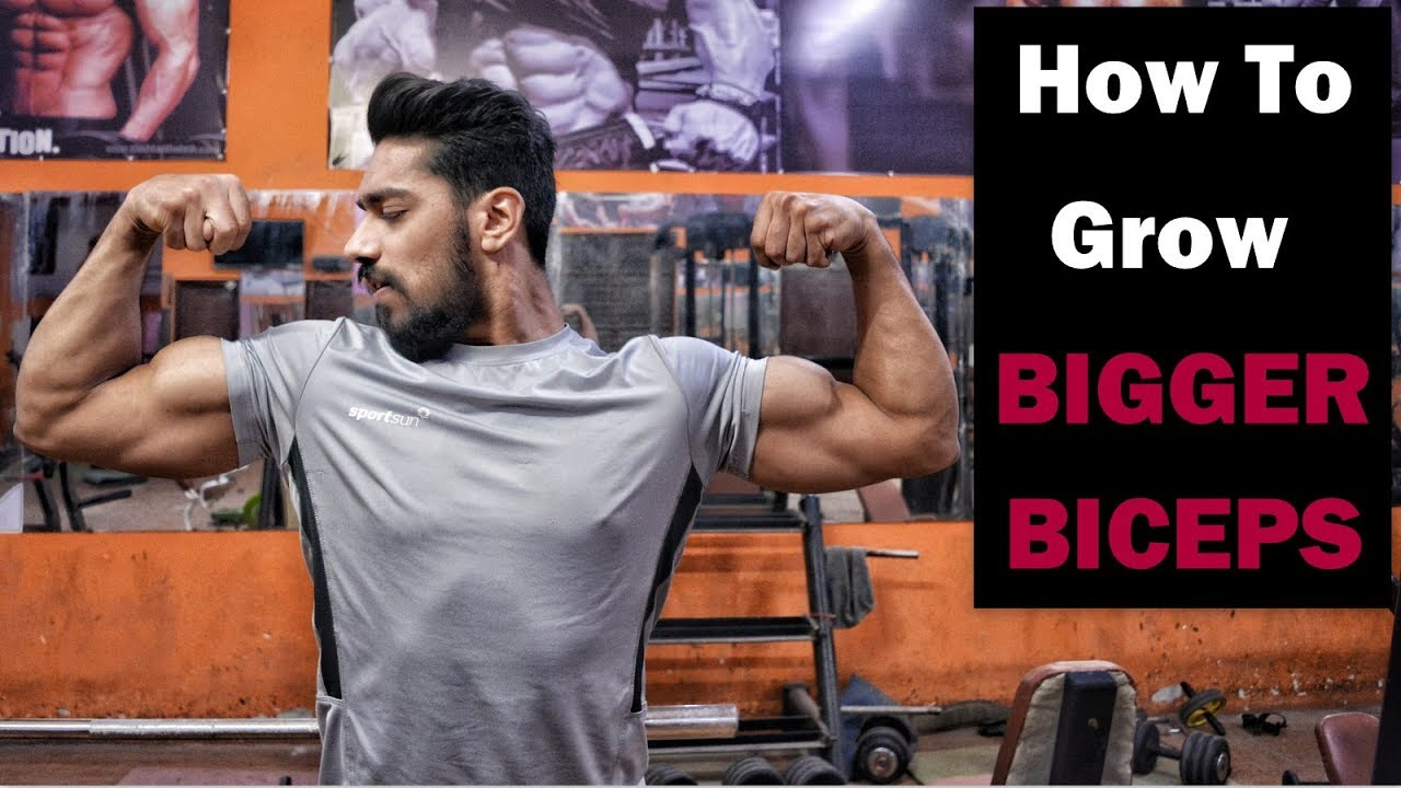 how to get big bicep fast