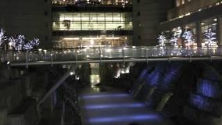 吉田由利子の映像と音楽 冬の横浜散歩道