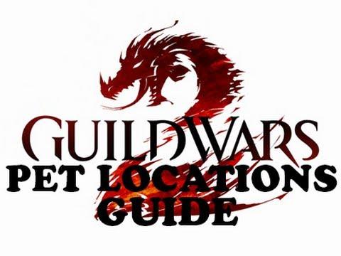 Bloodstone Cat Guild Wars  Food