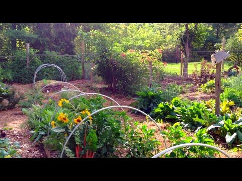 1 Acre Garden Huge Production Youtube