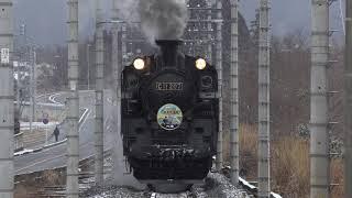 [4K60P] C11-207 正面狙いの東武鉄道「SL大樹」