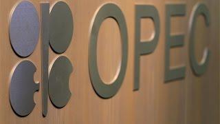 OPEC Secretary General: Members Will Listen to Iran