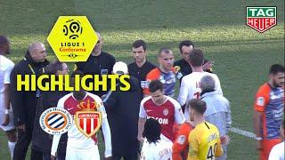Montpellier Hérault SC - AS Monaco (2-2) - Highlights - (MHSC - ASM) / 2018-19