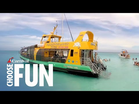 Deluxe Stingray City Sandbar in Grand Cayman (with audio description)