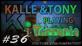 Kalle & Tony playing Terraria #36